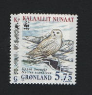 Groenland °° 1999 N 313 Faune Oiseau - Groenland