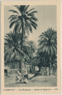 Laghouat (arabisch الأغواط Al-Aghwat Les Ramparts Etude De Palmiers - Édité Spécial Pour Hôtels Transatlantique - Algérie