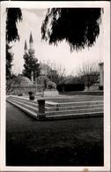 !  Postcard 1955 From Homs, Syrien, Syria - Syria