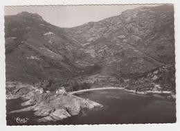 MF52 - CORSE - GIROLATA - Vue Panoramique, Aérienne - La Tour Et La Marine, Et Golfe De Girolata - Francia