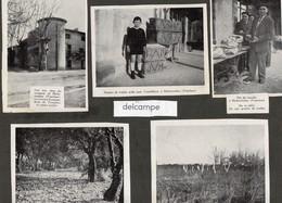 VAUCLUSE - 5 Images Collées Sur Un Support Cartonné - Truffes  Et Truffière à RICHERENCHES Et VISAN - Alte Papiere