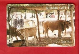 GAMBIA  Chip Phonecard - Gambia
