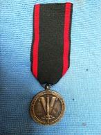 Médaille Résistance Polonaise En France. - France