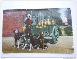 België Belgique Une Laitière Flamande Attelage De Chiens Melkboerin Honden Kar Circulée 1911 Turnhout-> Aulnois Déchi - Marchands Ambulants