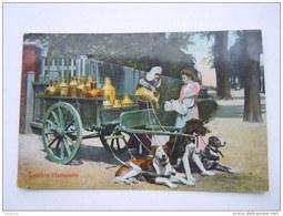 België Belgique Une Laitière Flamande Attelage De Chiens Melkboerin Honden Kar Gelopen Circulée 1910 Anvers-> Turnhou - Marchands Ambulants