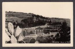 81196/ JERUSALEM, Mount Of Olives - Israel