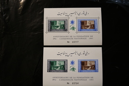 Afghanistan National Assembly Building Perf & Imperf Souvenir Sheet Block MNH 1961 A04s - Afghanistan