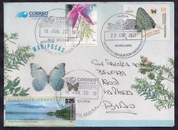 Argentina - 2018 - Papillons, Fleurs Et Paysages De L'Argentine - Lettre Décorée - Argentinien
