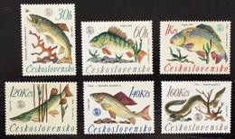 Czechoslovakia 1966; Animals & Fauna, Fishes; MNH / ** VF; CV 16 Euro; - Fishes