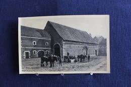 F-195 /  Rijckhoven Bij Bilsen, Het Kasteel Alde Biessen ( N°5 ) - Bilzen