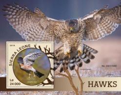 Sierra Leone   2016  Fauna  Hawks - Sierra Leone (1961-...)
