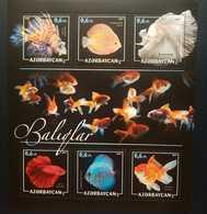 O) 2017 AZERBAIJAN, FISH - LIONFISH - PTEROIS, SYMPHYSODON, BETTA, CARASSIUD - BALIQLAR, MNH - Azerbaïjan