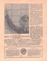 "WWII WW2 Flugblatt Tract Leaflet Soviet Propaganda Against Germany ""Frontnachrichten"" August 1942 Nr. 215  CODE 1763 - 1939-45"