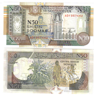 SOMALIA 1991 50 N SHILLINGS  Lotto 1134 - Somalië
