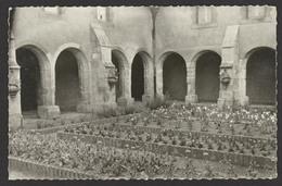 D 56 - VANNES - Ancien Carmel De Nazareth - Le Cloitre - Photo Chauvin - CPSM - Vannes
