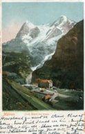SWITZERLAND - MURREN - Grd. Hotel Des Alpes - Undivided Rear 1903 - Addressed To UK - BE Berne