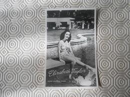 Fotoarchief Film En Toneel  Echte Foto  Real Photo  Elizabeth Taylor  MGM - Artisti
