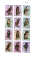 Suriname 2019, Owls 12val - Surinam