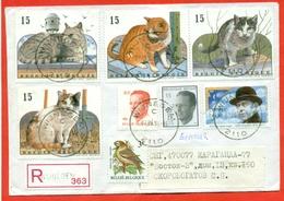 Belgium 1993.Registered Envelope Passed Mail. - Domestic Cats