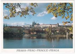 Praha / Prague - Prague Castle Hradcany  - (Ceska Republica) - Tsjechië