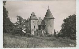 CERIZAY - Château D' APPEL VOISIN - Cerizay