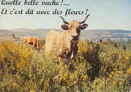 « QUELLE BELLE VACHE !... Et C'est Dit Avec Des Fleurs ! » (20537) - Vaches