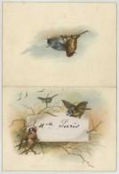 Menu Du 5 Janvier 1897 . Traiteur Gault . Imprimeur Pottin , Nantes . Mariage Vénard - Dreux . Oiseaux . - Menu