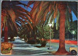 °°° Cartolina N. 94 S. Benedetto Del Tronto Viale Delle Palme - Notturno Viaggiata °°° - Ascoli Piceno