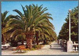 °°° Cartolina N. 95 S. Benedetto Del Tronto Le Palme - Notturno Viaggiata °°° - Ascoli Piceno
