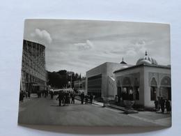 19A - Expo Universelle Bruxelles 1958 Epicarte Pavillon Tunisie Maroc France - Expositions