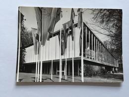 19A - Expo Universelle Bruxelles 1958 Epicarte Pavillon Israël - Expositions
