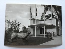 19A - Expo Universelle Bruxelles 1958 Epicarte Pavillon République Dominicaine Dominican Republic - Expositions