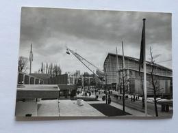 19A - Expo Universelle Bruxelles 1958 Epicarte Avenue Des NAtions - Expositions