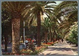 °°° Cartolina N. 110 S. Benedetto Del Tronto Viale Delle Palme Viaggiata °°° - Ascoli Piceno