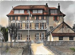 Frasnois Nid Des Merles - France