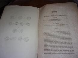 NORMANDIE 1848   PAYS DE CAUX NOTICE PAR M DE GLANVILLE SUR LES MEDAILLES TROUVEES A CAILLY - Normandie