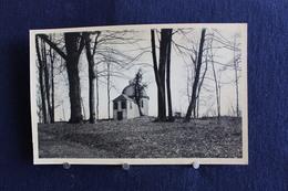 F-198 /  Rijckhoven Bij Bilsen, Het Kasteel Alde Biessen ( N°32 ) - Het Paviljoen In Het Park - Bilzen