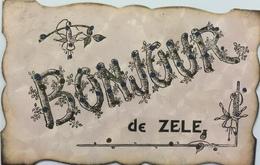 (352) Bonjour De Zele - Blauwe Stipjes Op De Letters -  Takjes Rond De Letters - Zele