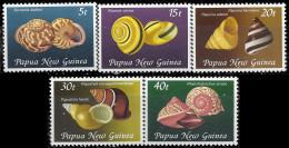 PAPOUASIE NOUVELLE-GUINEE - Coquilles De Gastéropodes - Papouasie-Nouvelle-Guinée