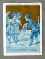 Chromo Liebig S5 S 5 Enfants Bleu Or Bord De Mer Seaside Plage DANGIVILLE 1872 - Liebig