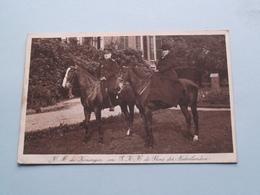 H.M. De Koningin En Z K H De Prins Der Nederlanden ( NEDERLAND / Holland ) Anno 1917 ( Zie Foto ) M.M.Couvée ! - Familias Reales