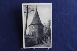 F-201 /  Rijckhoven Bij Bilsen, Het Kasteel Alde Biessen ( N°37 ) - De 1ste Vestingtoren - Bilzen