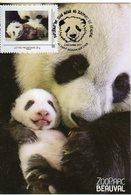 Carte Maximum Pandas Huan Et Son Bébé  ZOO DE BEAUVAL Oblitération Du Baptême Le 4 Décembre 2017 (sur Timbramoi) - Orsi