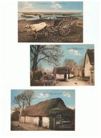 1928-807  3cp  La Briére    Dep 44  Vente Retirée Le 27-07 - Francia
