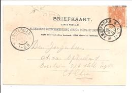 Bontkraag Enkelfrankering 3 Cent Oranje N.V.P.H. 56 AK Amsterdam O.L.V. Gasthuis - Brieven En Documenten