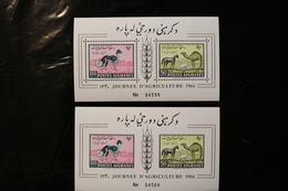 Afghanistan Afghan Hound Horse Sheep Camel Agriculture Souvenir Perf & Imperf Sheet Block MNH 1961 A04s - Afghanistan