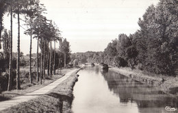 45  NARGIS   :  Le Canal Le Port ///   REF  JUILLET .19  //  REF BO. 45 - France