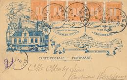 363/29 - Carte Privée Illustrée TP Pellens YPER 1913 - Stoommelkerij St Livinus ELVERDINGHE - 1912 Pellens