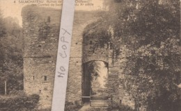 4 Salmchâteau - Ruines De L'ancien Château Des Comtes De Salm - Vielsalm