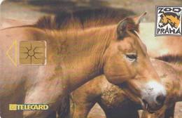 REPUBLICA CHECA. Przewalski's Horse. C265B, 02/01.99. (175). - Horses